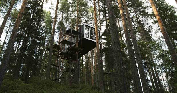 tree-hotel (6)